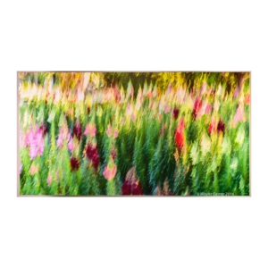38x68_stretched-canvas_snapdragons